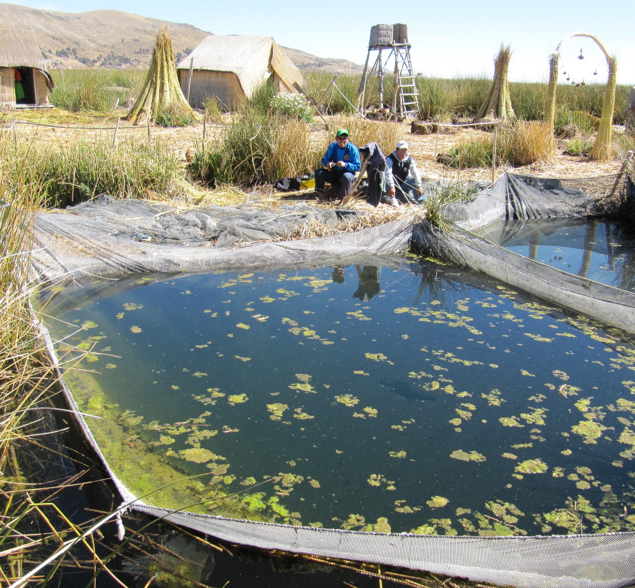 På Titicacasjön